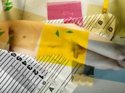 Fuchsia, Yellow, Green, Blue, Numbers, Man, Cement, Paper